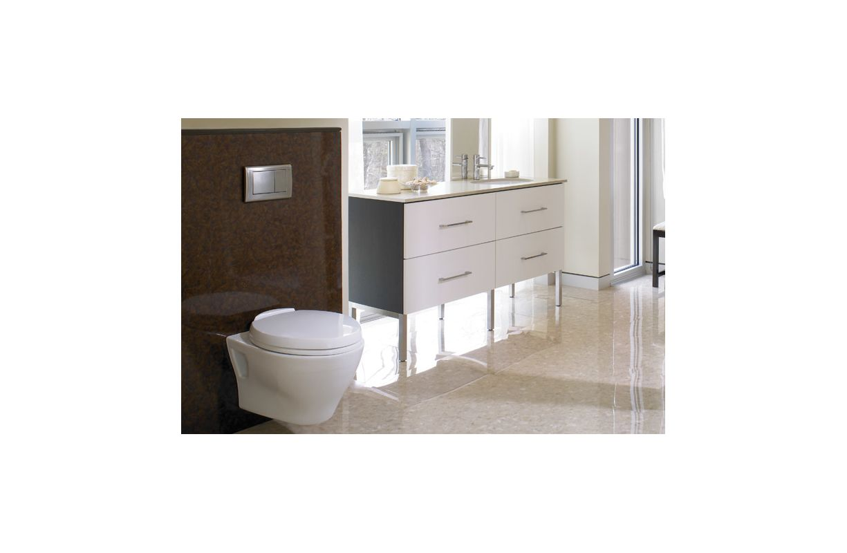 Exelent Sanitary Toto Photo - Bathroom and Shower Ideas - purosion.com