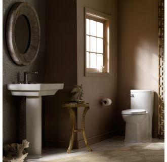 Proflo Toilet Reviews