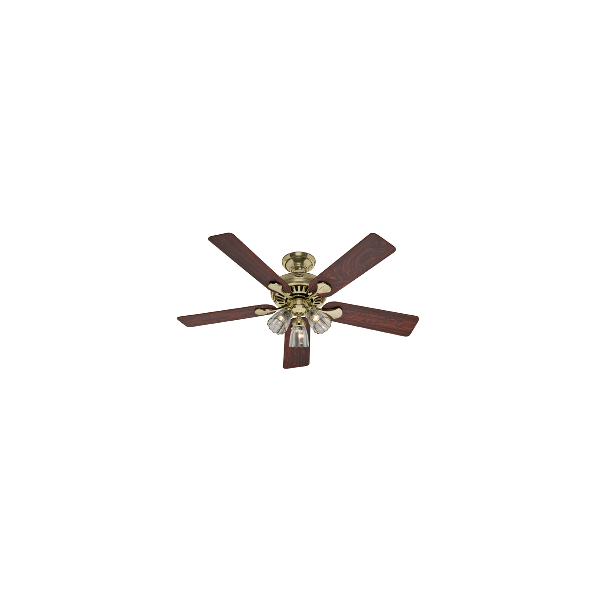 Hunter 20544 Bright Brass 52 Summer Breeze Plus Ceiling Fan Blades And Light Kit Included