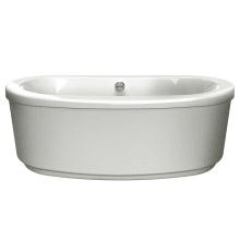 Jacuzzi Freestanding Bathtubs Build Com