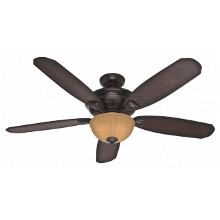 Hunter 53255 onyx bengal 56 indoor ceiling fan 5 blades for Markley motors service coupons