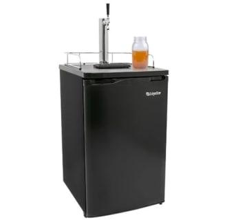 20 Inch Wide Single Tap Kombucha Dispenser