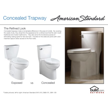 American Standard 2989 101 020 White Cadet 3 Elongated Two