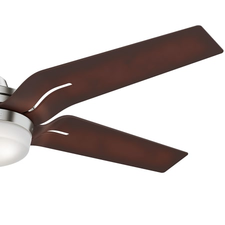 Casablanca 59197 Brushed Nickel With Champagne Blades