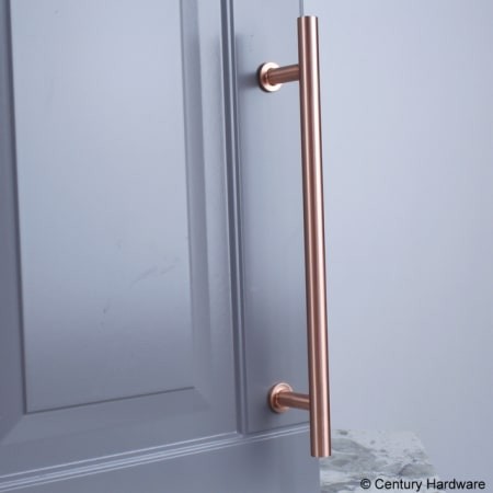 A large image of the Century 10479A Century-10479A-Satin Rose Gold installed