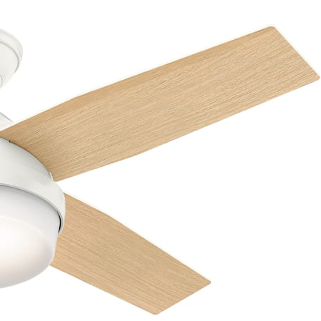 59216 Dempsey 52 inch Hunter Indoor Ceiling Fan with light and remote control Brushed Nickel