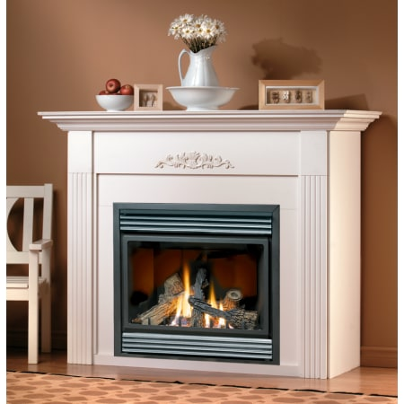 Natural Gas 18 000 Btu Direct Vent Zero Clearance Fireplace Collection