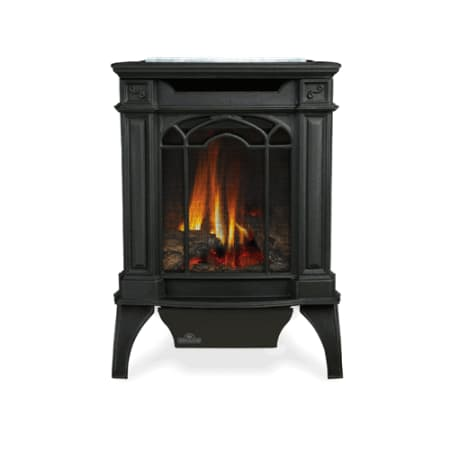 Napoleon Gds20nsb Black 20000 Btu Free Standing Direct Vent Natural Gas Stove With Safety