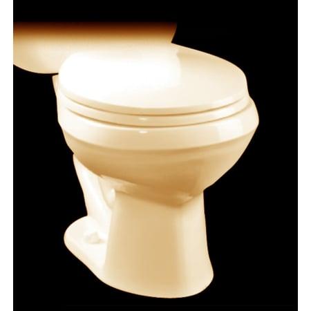 Prime Proflo Pf1203Wh White Elongated Toilet Bowl Only With 12 Inzonedesignstudio Interior Chair Design Inzonedesignstudiocom