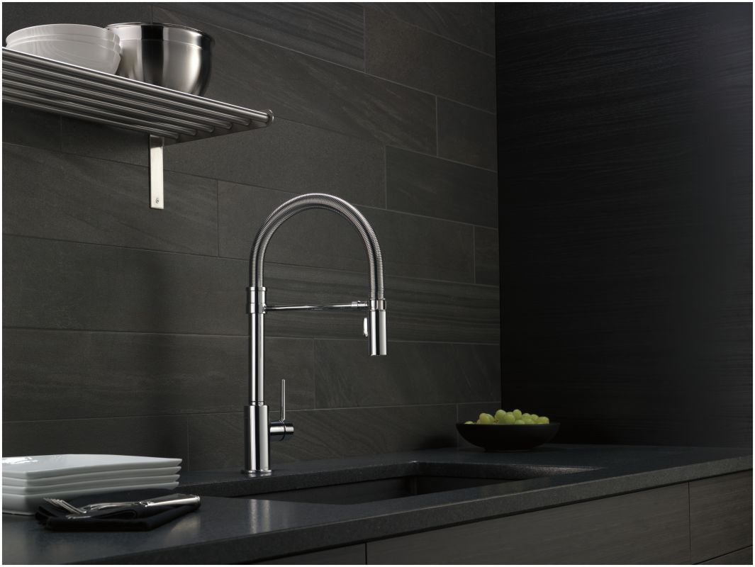 Delta 9659-KS-DST Black Stainless Trinsic Pro Pre-Rinse Pull-Down ...