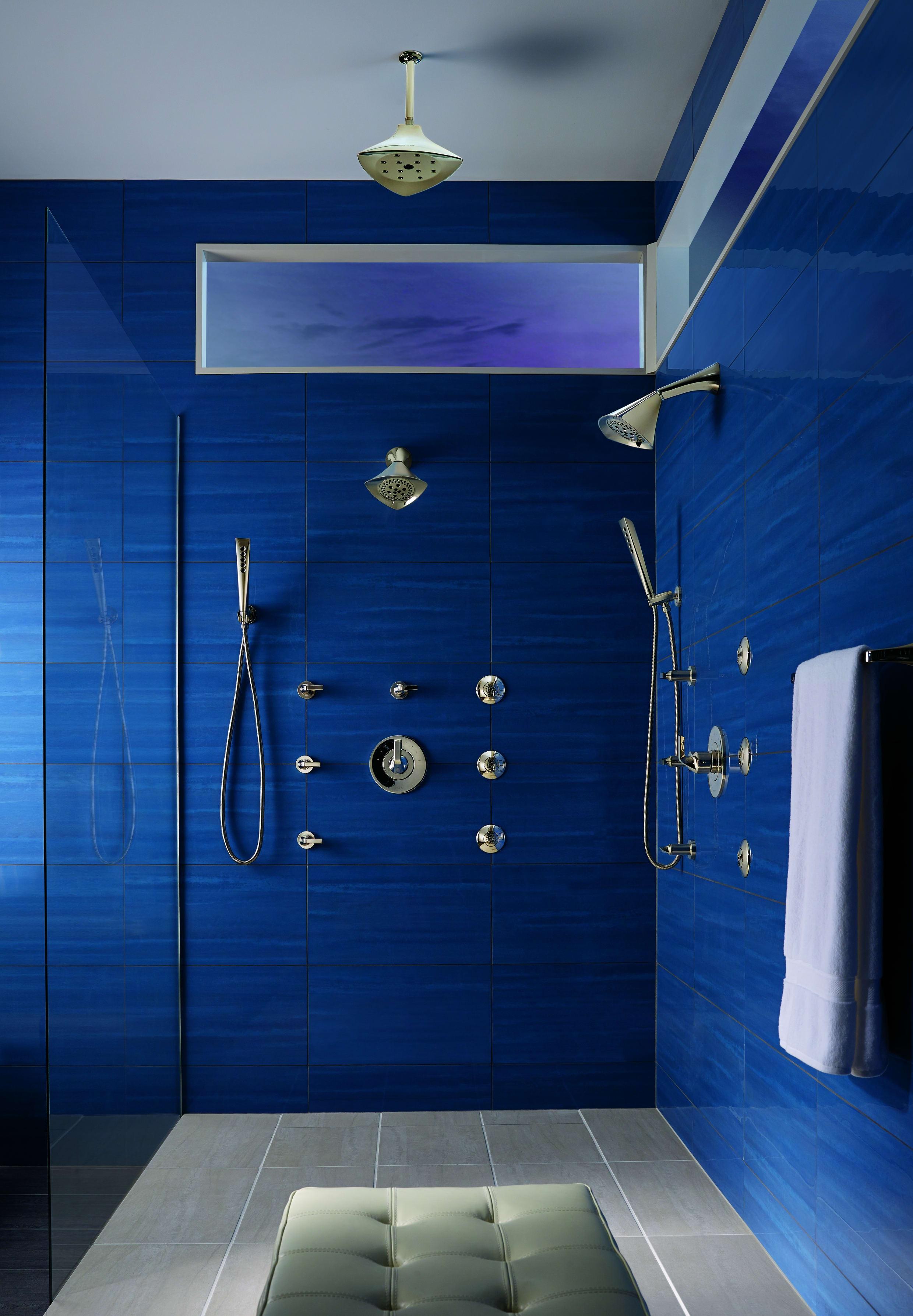Brizo 88850-PN Brilliance Polished Nickel Sotria Hand Shower Package ...