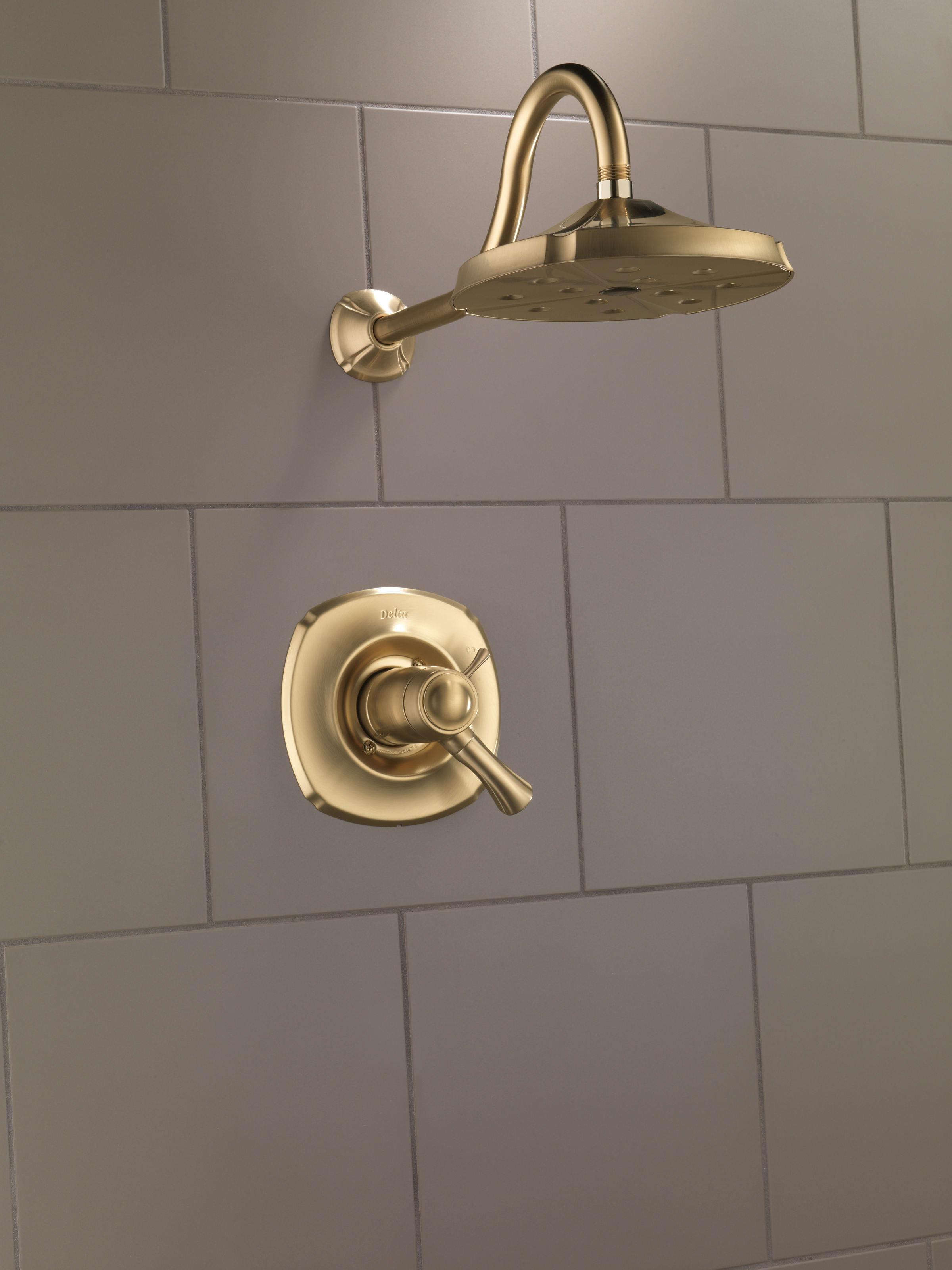 Delta Champagne Bronze Shower Door