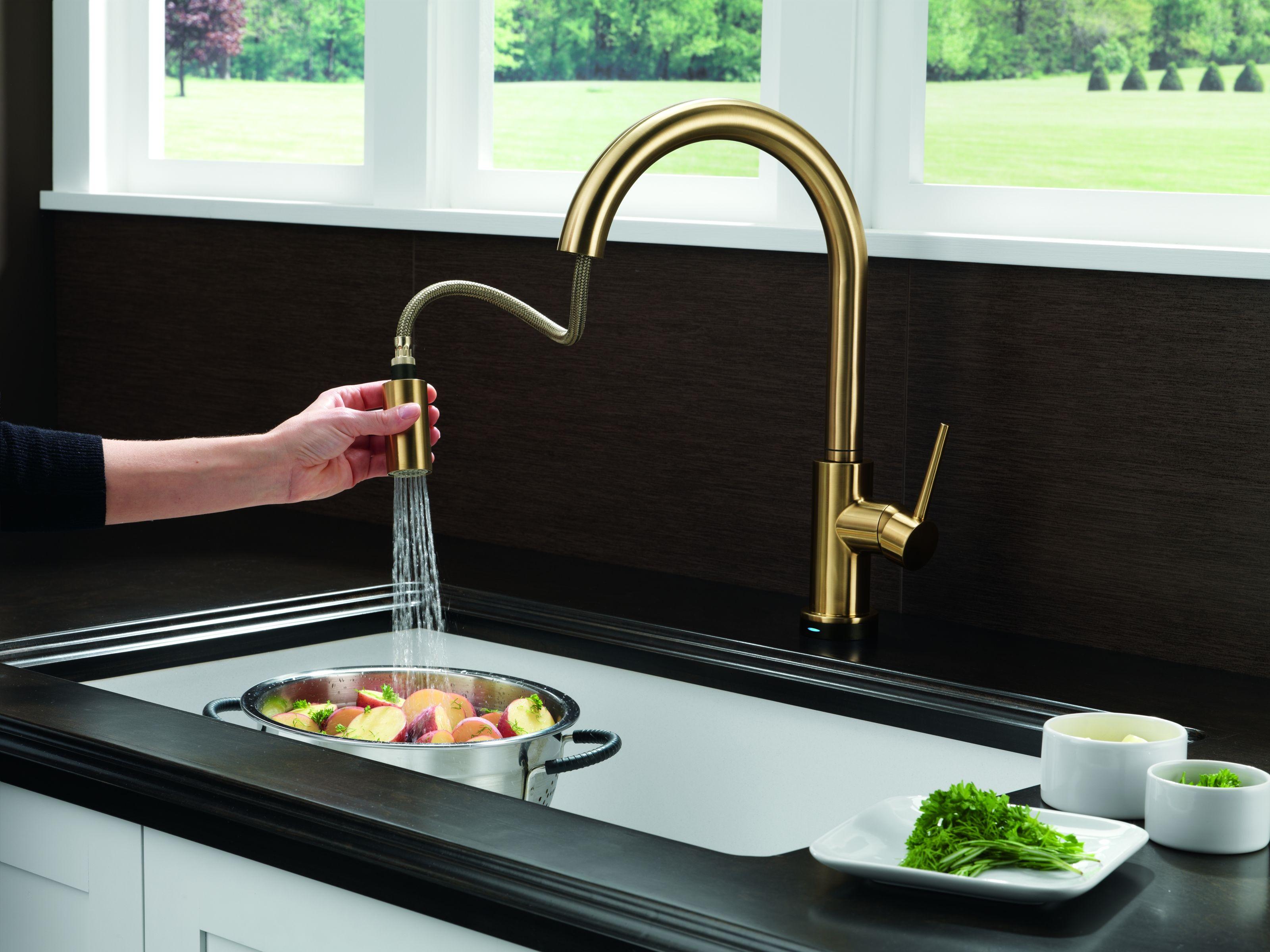 Delta 9159-CZ-DST-SD Champagne Bronze Trinsic Pull-Down Kitchen ...