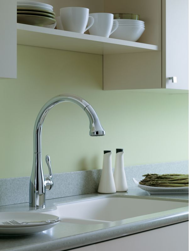 Offer Ends  Hansgrohe Kitchen Faucet