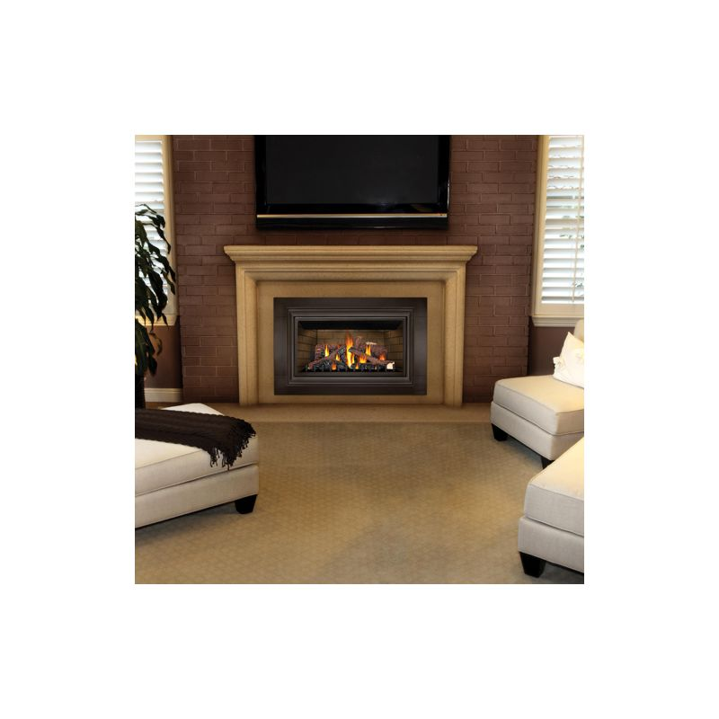 Napoleon Gdizc Nsb N A 24000 Btu Insert Direct Vent Natural Gas Fireplace With Safety Barrier
