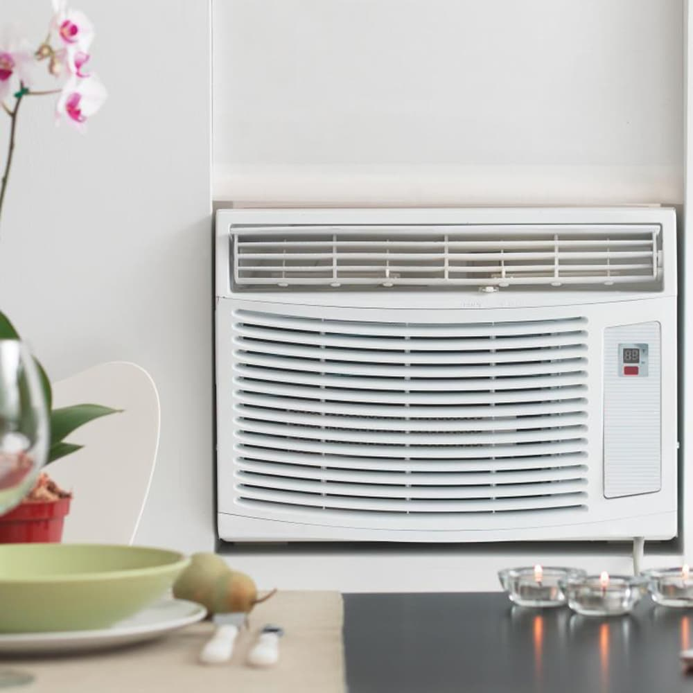 Air Purifiers Amp Indoor Air Quality Allergy And Air